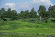 <p>Этот снимок сделан недалеко от д.Котово. </p>