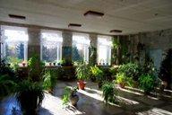 <p>На втором этаже у нас устроен зеленый уголок, где собраны разнообразные комнатные растения.</p>
